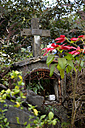 South America, Bolivia, Carmen Pampa, Old grave yard - FLK000275