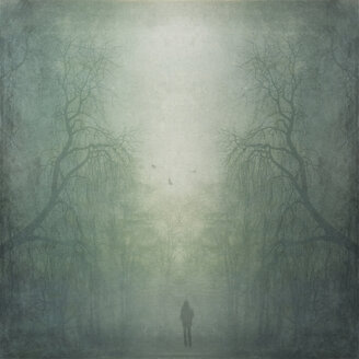 Person walking through misty forest, composite - DWI000076