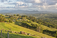 Australia, New South Wales, Byron Bay, early morning view over hilly farmland to the Nightcap national park - SHF001357