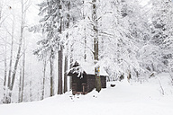 Germany, Rhineland-Palatinate, Palatinate Forest, Palatinate Forest-North Vosges Biosphere Reserve, Mountain shelter - GWF002883