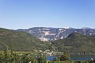 Italy, South Tyrol, Lake Kaltern, Lago di Caldaro, Wine-growing district - GW002893