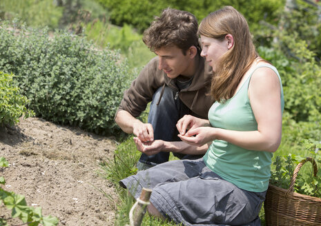 Young couple sowing in garden - DISF000842