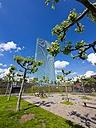 Germany, Hesse, Frankfurt, new building of European Central Bank - AMF002293