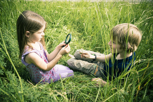 Brother and sister sitting on meadow playing with magnifying glass - SARF000670