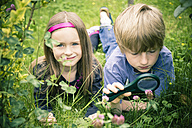 Brother and sister lying on meadow watching flowers with magnifying glass - SARF000678