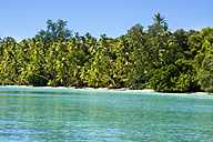 Micronesia, Palau, Peleliu, lagoon with palm-lined beach - JWAF000053