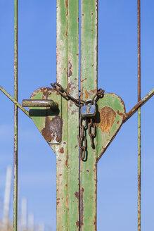 Germany, Baden-Wuerttemberg, Old door, Heart-shape - WDF002496