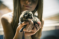 Little girl holding kitten in her hands - SARF000696