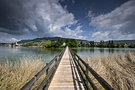 Switzerland, Thurgau, Eschenz, Wooden bridge, View over Rhine river to Island of Werd - ELF001071