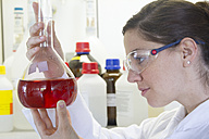 Portrait of female chemist holding Erlenmeyer flask with red liquid - SGF000766
