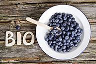 Organic blueberries in a bowl - ODF000717
