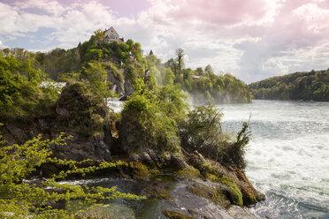 Switzerland, Schaffhausen, Rhine falls with Laufen Castle - WI000797