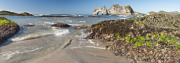New Zealand, Golden Bay, Wharariki Beach, waves gushing over rocks with seaweed at the beach and rock arch in the background - SHF001447