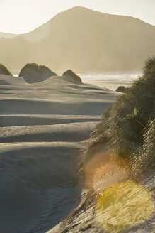 New Zealand, Golden Bay, Wharariki Beach, wind patterns and reflections in a sand dune - SHF001462