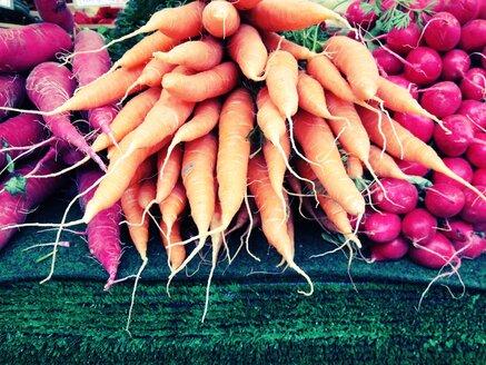 Carrots (Daucus carota latl.) - RIMF000280