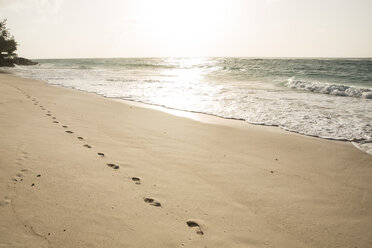 Caribbean, Barbados, Silver Sands, footsteps on the beach - SKF001555