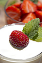 Strawberries in a glass and strawberry with yogurt in a glass, garnished with lemon balm - YFF000183