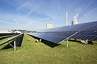 Germany, North Rhine-Westphalia, Petershagen, Petershagen-Lahde, Sheeps grazing on a field with solar panels. - HAWF000330