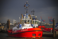 Germany, Hamburg, Port of Hamburg, Elbe river, Towboat - KRP000551