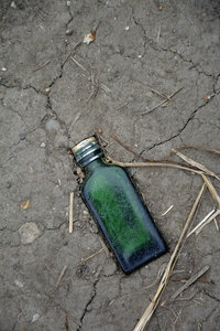 Green glass bottle trodden in soil, elevated view - AX000708