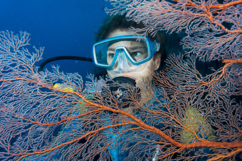 Australia, Great Barrier Reef, Diver behind sea fans - JWAF000100