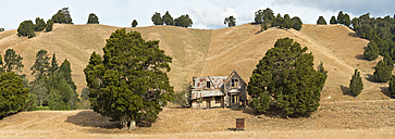 New Zealand, South Island, Wakefield, ruinous old wooden farmhouse - SHF001503