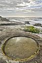 New Zealand, South Island, Tasman, Kahurangi Point, rock pool in eroded limestone sediment - SHF001513