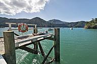 New Zealand, South Island, Marlborough Sounds, Tennyson Inlet, boy lying on a wooden jetty - SHF001542