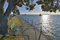 New Zealand, South Island, Nelson, bench under a tree on Nelson waterfront - SHF001565