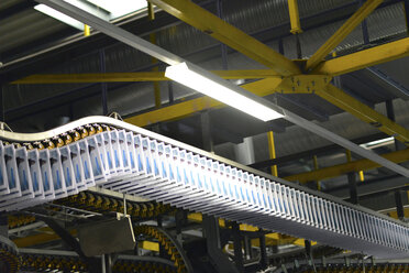 Conveyor belt with printed newspapers in a printing shop - SCH000378