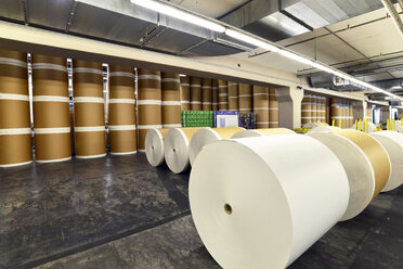 Storage of paper rolls in a printing shop - SCH000359
