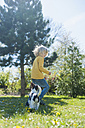 Boy playing with Jack Russel Terrier puppy in garden - MJF001303