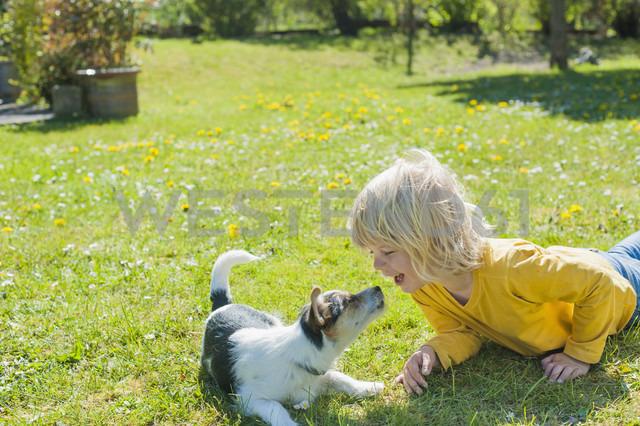 Boy playing with Jack Russel Terrier puppy in garden - MJF001314 - Jana Mänz/Westend61
