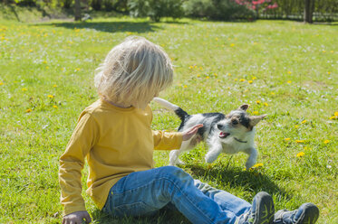 Boy playing with Jack Russel Terrier puppy in garden - MJF001320