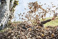 Three playful children in autumn leaf heap - HHF004836