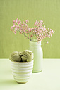 Green tea icecream and Gypsophila flower - ECF000681