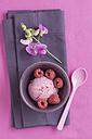 Raspberry icecream with poppy seed and flower - ECF000698