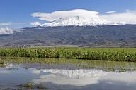 Turkey, Eastern Anatolia, Agri Province, View to Mount Ararat - SIE005648
