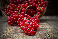 Red currants, Ribes rubrum, on dark wooden table - LVF001615