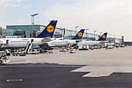 Germany, Hesse, Frankfurt am Main, Airplanes of Lufthansa at passenger terminal - AM002541