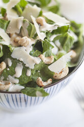 Caesar Salad with roasted cashews in a bowl - SBDF001000
