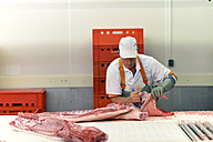 Processing of pig carcasses in a slaughterhouse - LYF000198