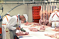 Processing of pig carcasses in a slaughterhouse - LYF000204