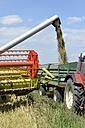 Germany, North Rhine-Westphalia, Petershagen, Combine harvester harvesting a barley field - HAWF000407
