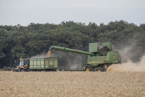 Germany, Lower saxony, combine harvester at work - PVC000205