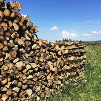 Belgium, Province Luxembourg, The Ardennes, Firewood - GWF003016