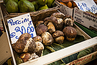 Italy, Tuscany, Pisa, crate with Porcini at market stall - SBD001068