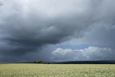 Germany, Constance district, stormy atmosphere over Black Forest - ELF001235