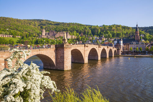 Germany, Baden-Wuerttemberg, Heidelberg, Old town, Old bridge, Church of the Holy Spirit and Heidelberg Castle - WDF002525