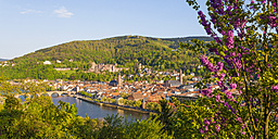 Germany, Baden-Wuerttemberg, Heidelberg, View to Old town, Old bridge, Church of the Holy Spirit and Heidelberg Castle - WDF002527